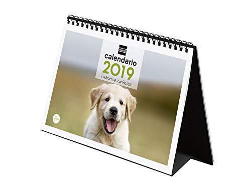 Finocam 780322819 - Calendario sobremesa 2019