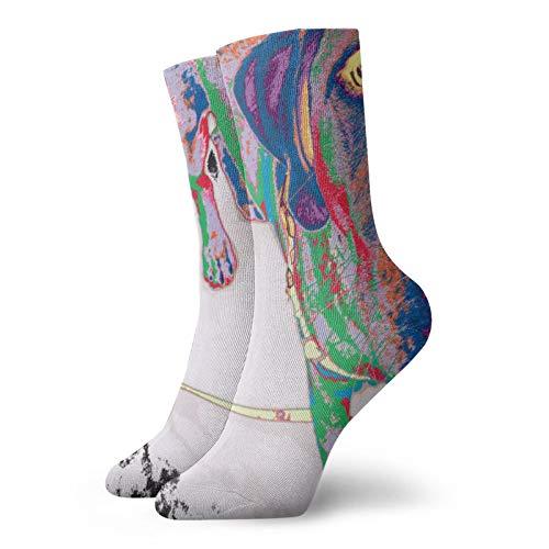 Calcetines Rainbow Lab para mujer, calcetines divertidos de 30 cm