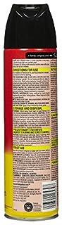 Raid Ant & Roach Killer Insecticide Spray, Lemon, 17.5 oz-2 pk