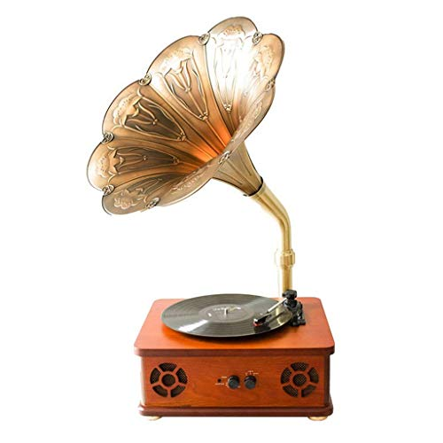 Hejok Retro Wireless Bluetooth Speaker Gramophone With Subwoofer, Vintage Phonograph Shape Aluminum Alloy Copper Housing, Player Recording
