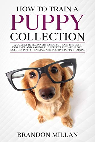 How to train a Puppy, Collection: A complete beginners guide to train the best dog ever and raising the perfect pet with love, includes potty training and positive puppy training