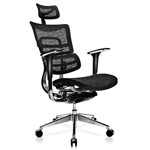 TomCare Office Chair Ergonomic Mesh Office Chair with Adjustable Lumbar Support, Backrest, Headrest, Armrest and Seat Height Swivel Computer Chairs Desk Chairs High for Home Office Conference Room