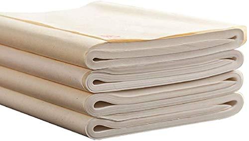 diandiandidi Xuan Reispapier Kalligraphie, Xuan Papier Weiß Chinapapier für Chinesiche und Japanische Tusche Malerei Sumi 100 Blatt (Shengxuan, 50 x 100 cm)