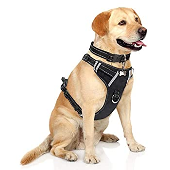 WINSEE Dog Harness No Pull Pet Harnesses with Dog Collar Adjustable Reflective Oxford Outdoor Vest Front/Back Leash Clips for Small Medium Large Extra Large Dogs Easy Control Handle for Walking