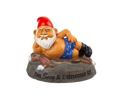 BigMouth Inc The Sexy and I GNOME It Gartenzwerg