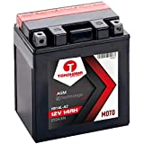 TOKOHAMA AGM Motorrad Batterie 14Ah 12V 255A/EN YB14L-A2, 12N14-3A (14AH YB14L-A2)
