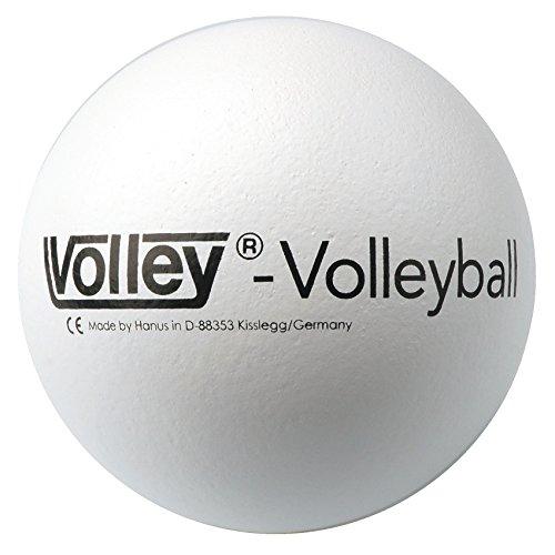 Balón de Volley