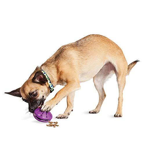 PetSafe Busy Buddy Twist 'n Treat, Leckerli-Spender, Hundespielzeug, XS, S, M und L, X-Small, PetSafe Busy Buddy Twist 'n Treat Hundespielzeug mit Futter oder Leckerlis