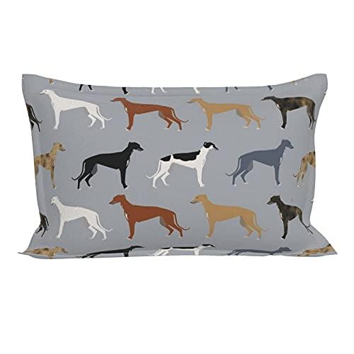 Funda de almohada oblonga lumbar, diseño de galgos, versión más grande, para perros, galgos, colores decorativos, funda de almohada con cierre de sobre, 50 x 76 cm