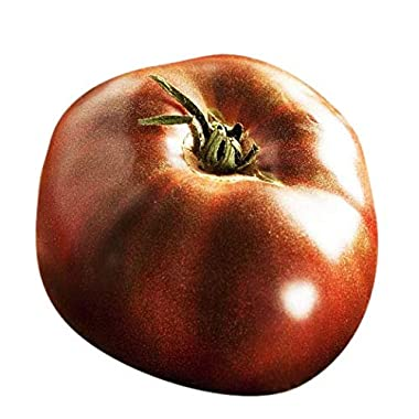 Organic Black Brandywine Heirloom Tomato Seeds - Large Tomato - One of The Most Delicious Tomatoes for Home Growing, Non GMO - Neonicotinoid-Free.