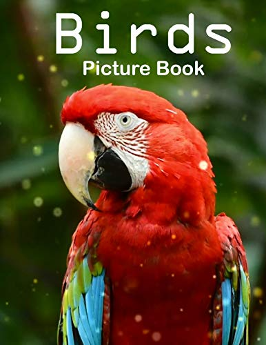 Birds Photography Photo Book: A picture book Gift for Human (Beautifull Birds Photo Book) V4