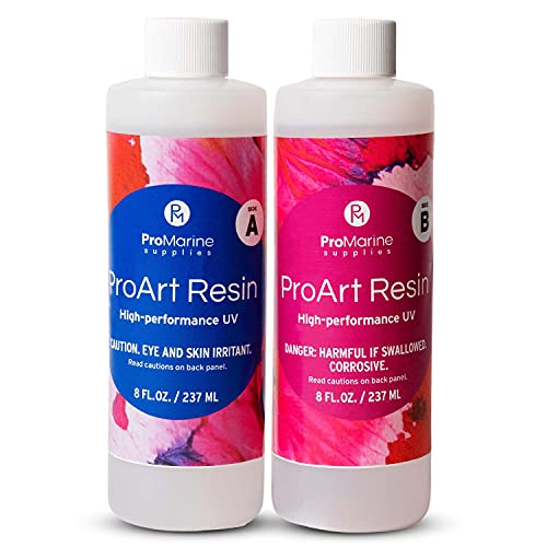 ProMarine Supplies Art Resin –16 Oz. Kit Pro Art Resin Kit – Art Resin Epoxy Clear – Easy to Use and Non-Toxic Formula – High Gloss Intense Shine – Ideal for Photography, Wood, Artwork