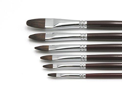 """Künstler Pinselset 1\"""" für Acryl & Ölfarbe, 6 hochwertige Pinsel aus Naturhaar Größen 2-18, Katzenzungen Premium Set 1"""