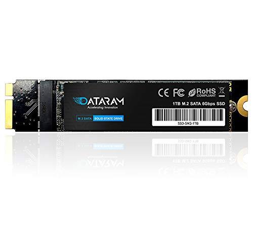 DATARAM SSD per Apple MacBook Air EMC 2558 e EMC 2559, SATA-III M.2 2280 SSD interno (1 TB)