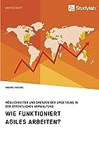 Wie funktioniert agiles Arbeiten? Moeglichkeiten und Grenzen der Umsetzung in der oeffentlichen Verwaltung