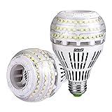 Sansi Ampoule LED E27 Dimmable Ampoule Edison 4000 Lumen 27W (250W Incandescence équivalent), Ampoules Basse Consommation LED 5000K Lumière du Jour