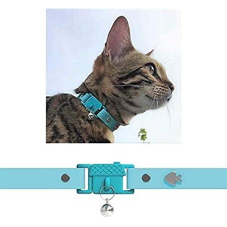 Kittyrama 猫の首輪 Aqua