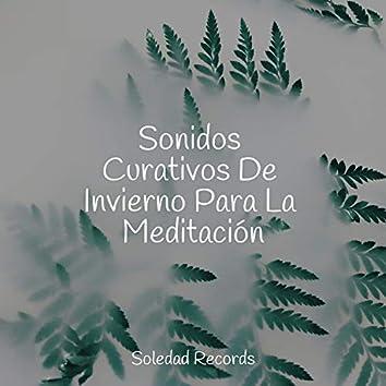 Sonidos Curativos De Invierno Para La Meditación