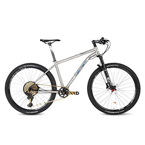 Bicicleta Montaña 27.5/29'', SRAM-XX1-12 Velocidad, Freno de Disco de Aceite Shimano, Full Suspension, Marco de Acero de Titanio,29inch*17inch