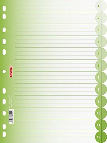 Brunnen 106659552 Ringbuchregister Colour Code (für Ordner und Ringbücher, aus PP, für A4, 12 Tabs) grün / kiwi