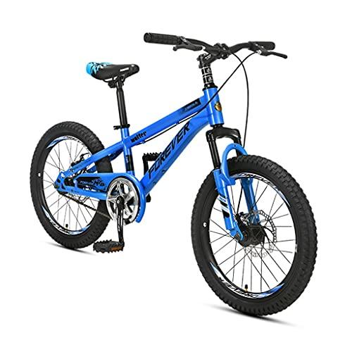 ZXQZ Bicicleta de Montaña, Bicicletas para Niños con Doble Amortiguación, 20 Pulgadas (Color : Blue)