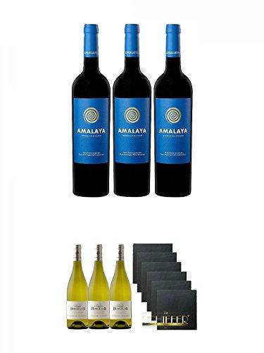 Amalaya Wein (blaues Label) Argentinien 3 x 0,75 Liter + Domaine Horgelus Blanc 3 x 0,75 Liter + Schiefer Glasuntersetzer eckig 6 x ca. 9,5 cm Durchmesser