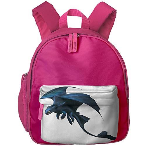 Hdadwy Lightweight Kids Toddler Bookbag Night Fury Printed Backpack for Child