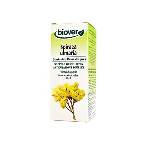 Biover - Flüssiger Auszug Spiraea ulmaria Organisch zertifiziert - 50 ml