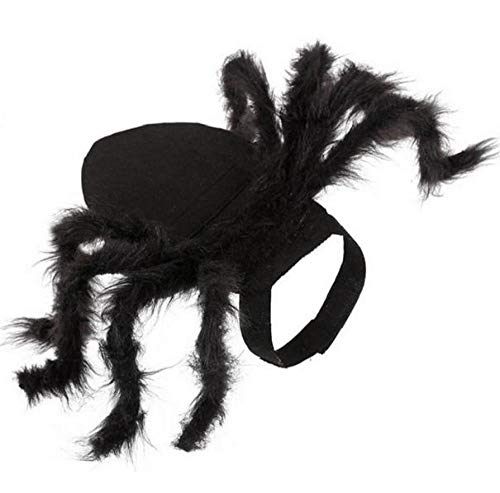 Halloween Pet Cat Spider Kostüm Spider Wings Kleidung Für Welpen Cats Halloween Pet Cat Dog Kostüme Nettes Kleid,M:Neck30~40cm/Bust40~55cm
