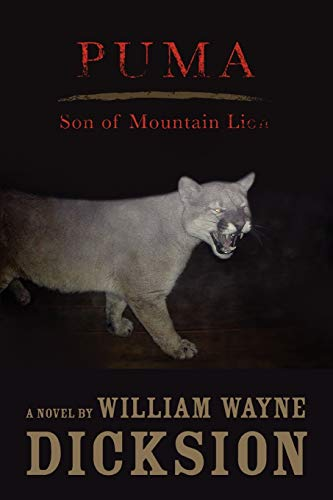 Price comparison product image Puma Son of Mountain Lion