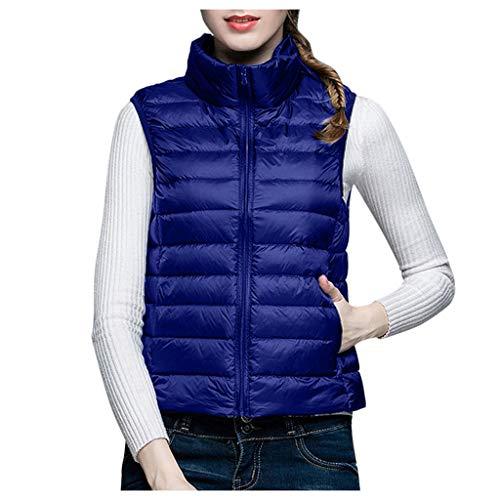 BRISEZZ Fasion dames opstaande kraag korte hak vrije tijd licht donsvest donsjack gewatteerde jas medium dikke gevoerd (zwart, donkerblauw, wijn, wit, S-XXXL)