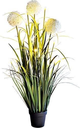 W B LED-Blumendeko Allium | eindrucksvolle 115 cm hoch | für innen und außen | beleuchtet mit 12 warmweißen LEDs