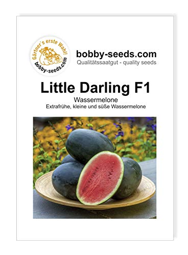 Little Darling F1 Wassermelone Samen von Bobby-Seeds Portion