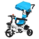 Pubota 2-in-1 Baby Tricycle Kids Stroller Tricycles 3 Wheel Baby Ride-On Push Toddler Steel Trike for 6 Month-6 Years Old Kids (Blue)