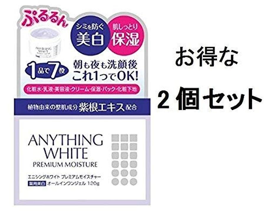 文言数学的な上エニシングホワイトプレミアムモイスチャー120g 2個セット