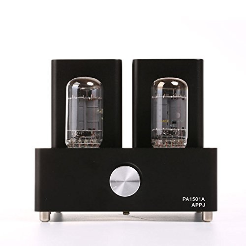 Amazing Deal Gemtune APPJ PA1501A mini tube amplifier with 6AD10 tube (black)