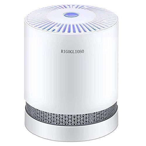RIGOGLIOSO Luftreiniger Air purifier für zuhause mit echten HEPA Filtern, Desktop Luftreiniger mit LED Allergie Ionen Generator, ohne Ozon, Perfekt gegen Staub- und Haustierallergene usw.
