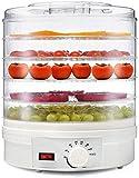 TXOZ-Q Deshidratador de alimentos grandes redondos eléctricos, 350W Grandes 5 bandejas extraíbles, control de temperatura ajustable □ Perfecto for D.I.Y Snacks naturales saludables, frutos secos