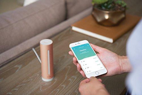 Capteur de qualité de l'air Netatmo : intérieur connecté, température, humidité 3