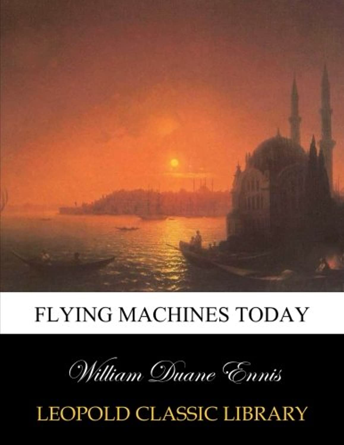 Flying machines today