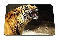 26cmx21cm マウスパッド (虎悪質歯雪) パターンカスタムの マウスパッド