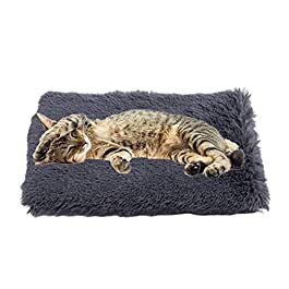 chunnron Cat Mat Vet Bed Puppy Blankets Dog Bedding Dog Crate Mat Dog Blankets Washable Pet Blanket Dog Bed Accessories Dog Crate Bed Fluffy Blanket