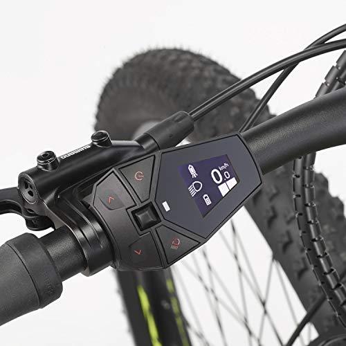 E-MTB FISCHER  MTB MONTIS 60i (2019) grün E-Mountainbike Bild 5*
