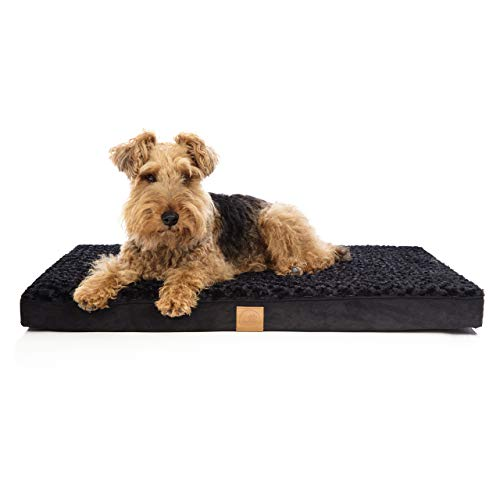 Pets&Partner Hundebett   Hundekissen   Oeko-TEX Zertifiziert   orthopädisch für mittel große und große Hunde M Schwarz