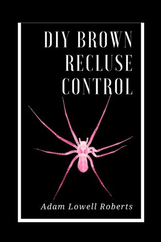 DIY Brown Recluse Control: A Simple Guide For Brown Recluse Treatments