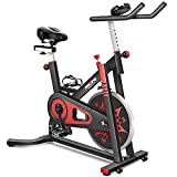 RELIFE REBUILD YOUR LIFE Exercise Bike Indoor Cycling Bike Stationary Bicycle with Resistance Workout Home Gym Cardio Fitness Machine Upright Bike