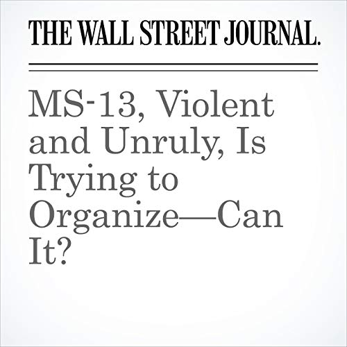 MS-13, Violent and Unruly, Is Trying to Organize—Can It? audiobook cover art