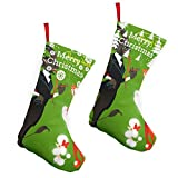 Pummbaby Christmas Scary Krampus Xmas Chat Girlmerry Christmas Stockings Xmas Socks Ornament Themed 10 Inch Double 2pcs Large Pair Formal Unique Female Male Hanger Pole