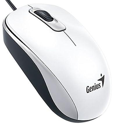 Genius DX-110 USB Óptico 1000DPI Ambidextro Blanco - Ratón (USB, Oficina, Botones presionados, Rueda, Óptico, 1000 dpi)