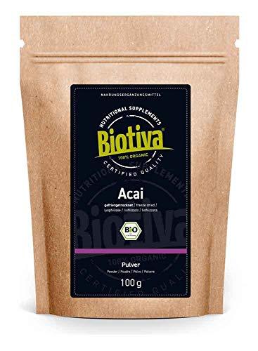 Polvo de azaí orgánico 100 g liofilizado - freeze dried - pulpa - polvo de fruta - Brasil - Euterpe precatoria - llenado y verificado en Alemania (DE-ÖKO-005)